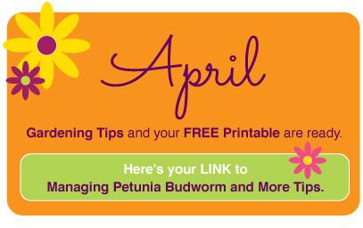 April2018-www.thegardeningtutor.net