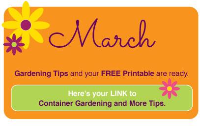 March2018-www.thegardeningtutor.net