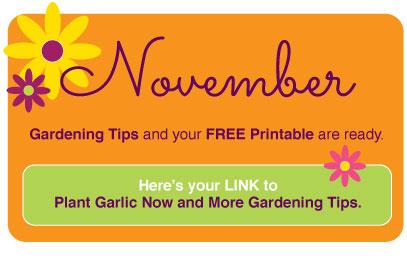 November2018-www.thegardeningtutor.net 2