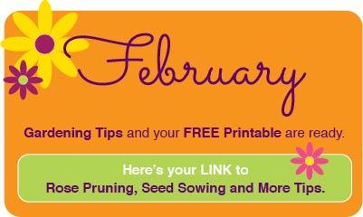 February2018-www.thegardeningtutor.net