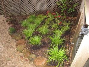 Plantcare One